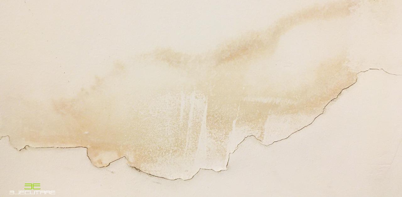 Como se ve una grieta o humedad en la pared y/o el techo